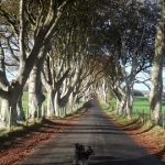Shay & Kitana at The Dark Hedges